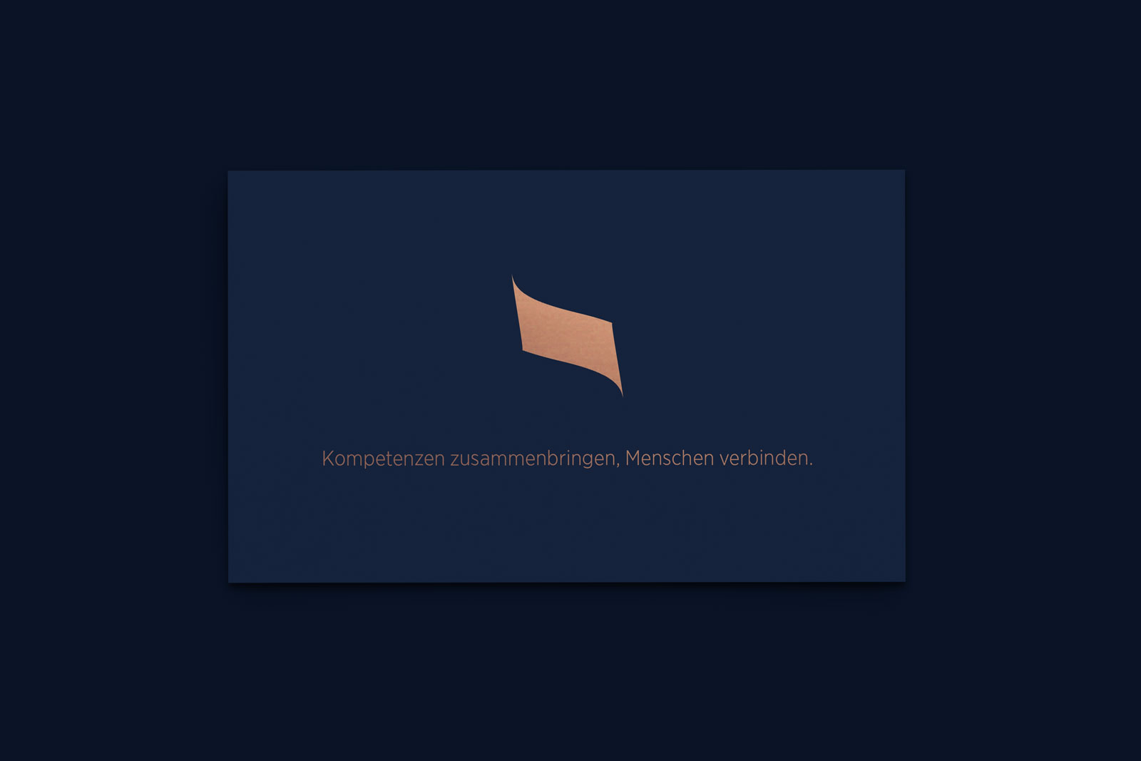 Steiner Hitech Businesscard 2